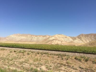 Interesting patterns in the hillside