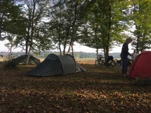 Tents beneath the trees